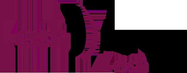 Portofolio - LashDream - Eleonora Tosco comunicazione